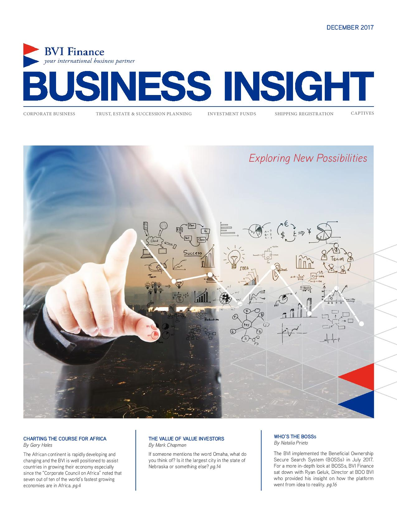 Business Insight: Exploring New Possibilities